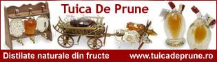 Link http://www.tuicadeprune.ro